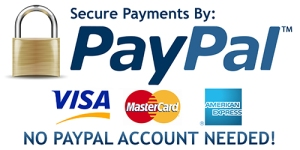 paypal-logo love for pin up